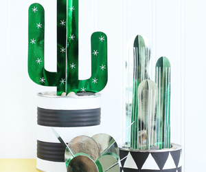 cactus, diy, and green image