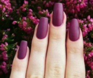 flowers, matte, and cute image