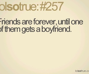 friends, boyfriend, and funny image