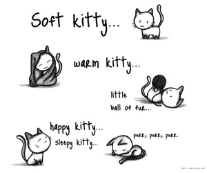 kitty, cat, and soft kitty image