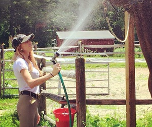barn, outdoors, and bath time image