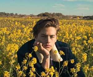 cole sprouse, flowers, and yellow image