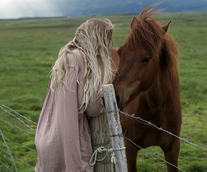 fashion, horse, and style image