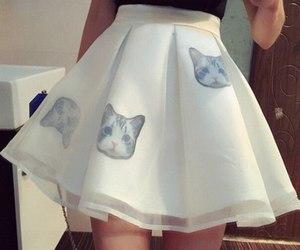 cat, skirt, and white image