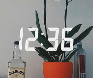alcohol, beautiful, and tumblr image