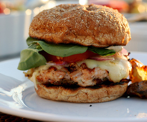 burger and food porn image