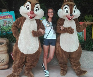 Animal kingdom, chip, and dale image