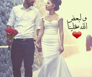 Image by سَـنْـفُـووْرِة حَـبِـيـبِـيْ