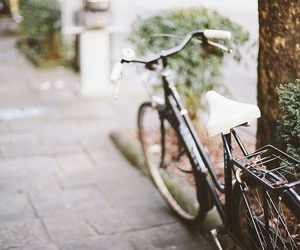 bicycle, street, and 50mm image