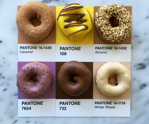 donnuts, cool, and pantone image