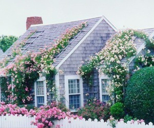 flowers, house, and vintage image