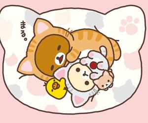 cat, rilakkuma, and kawaii image