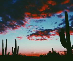 sky, cactus, and sunset image