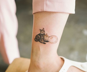 cats, ink, and tattoo image