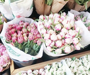 256 Images About Fleurs On We Heart It See More About Flowers