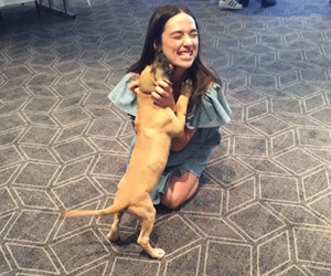 howler con and crystal reed image