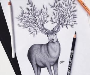 amazing, deer, and drawings image