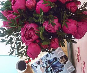 flowers, pink, and girl image