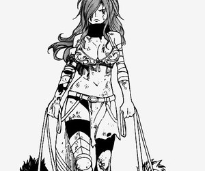 fairy tail and erza image
