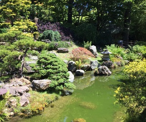garden, green, and japanese image