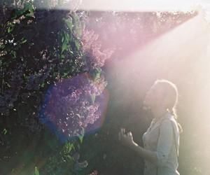 film, glare, and пленка image