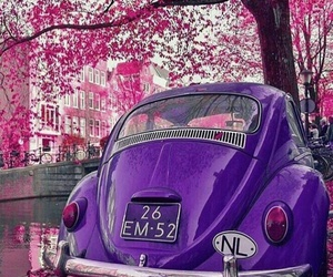 pink, car, and purple image