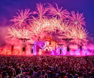 festival, Tomorrowland, and defqon1 image