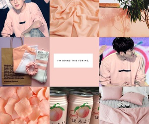 aesthetic, Moodboards, and peach image