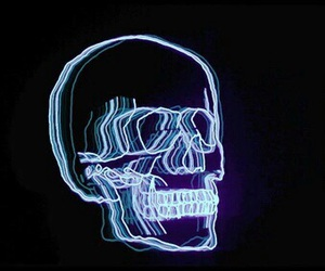 skull, light, and grunge image