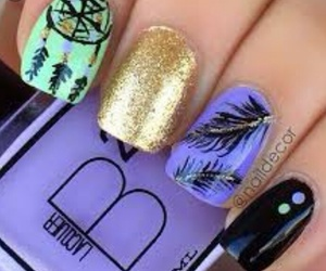 feather and nails image