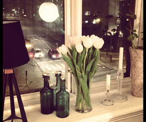 candles, window, and flower image