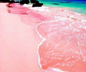 beach, pink, and summer image