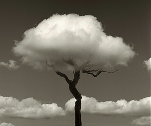 clouds, tree, and black and white image