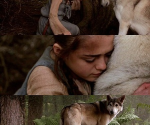 game of thrones, got, and nymeria image