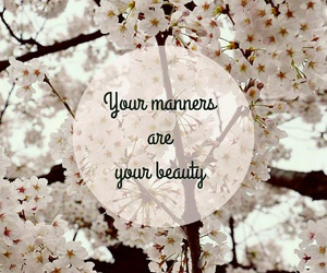 beauty, manners, and cherryblossom image