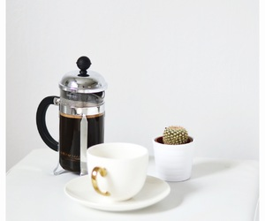 beautiful, french press, and plant image