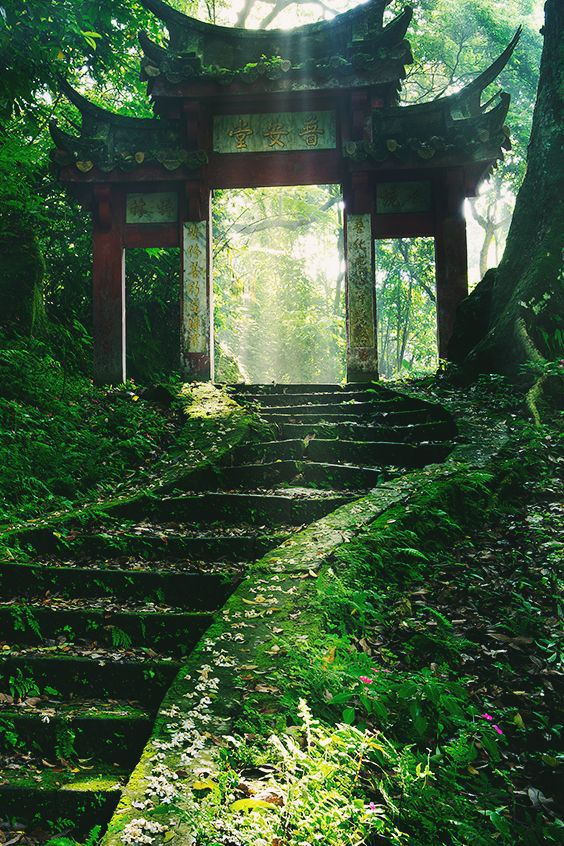 green, japan, and nature image