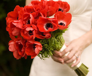 flowers, bouquet, and poppies image
