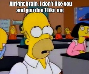 brain, simpsons, and funny image