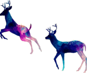 deer, animal, and art image