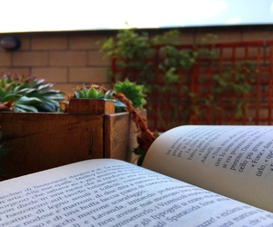books, harrypotter, and nature image