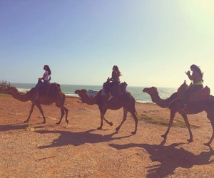 morocco and summer image