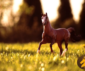 beautiful, breyer, and horse image