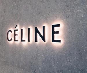 celine, luxury, and tumblr image