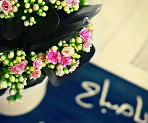 صباح الورد image