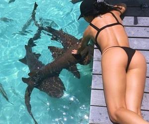 animals, cute, and bikini image