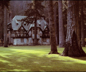 house, forest, and fairy tale image