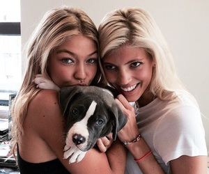 celebrities, puppy, and gigi hadid image