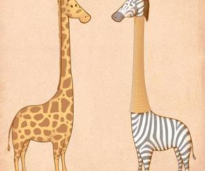 giraffe, zebra, and animal image