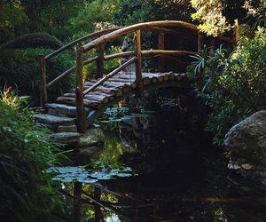 nature, bridge, and water image